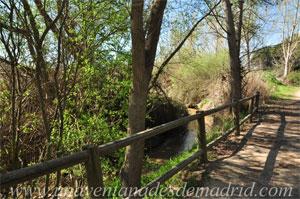 Arroyomolinos, Arroyo de Los Combos, cerca del Molino de las Isabelas