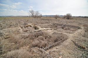 Getafe, Yacimiento de La Torrecilla
