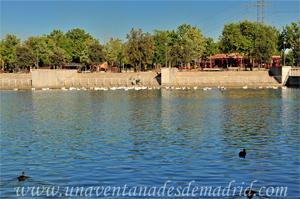 Leganés, Embarcadero del Lago del Parque de Polvoranca