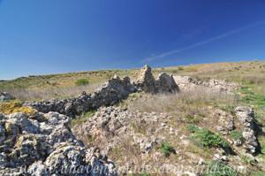 Villarejo de Salvan�s, Restos del templo del despoblado de Salvan�s