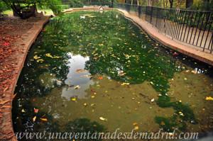 Quinta de la Fuente del Berro, Estanque para Patos