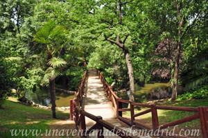 Campo Grande en El Retiro, Estanque e isla ovalada