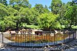 Parque del Retiro, Estanque de Patos