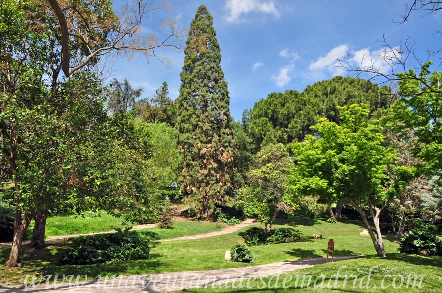 El retiro jard n de vivaces for Jardines 15 madrid