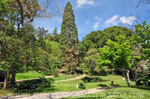 Retiro, Jardín de Vivaces