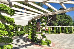 Retiro, Jardines de Cecilio Rodríguez