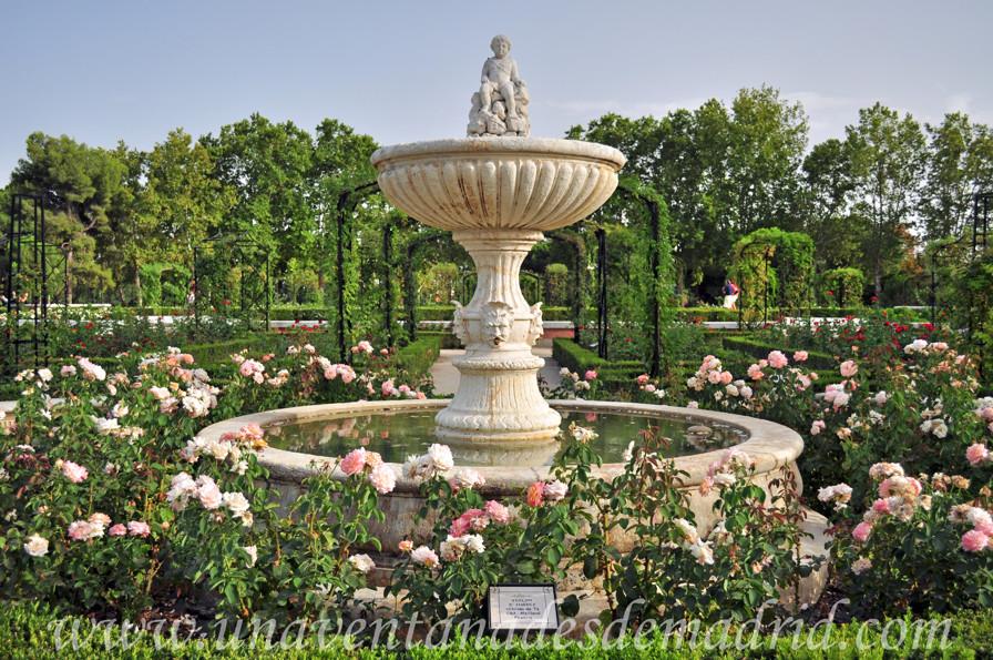 El retiro jardines de la rosaleda for Casa jardin madrid