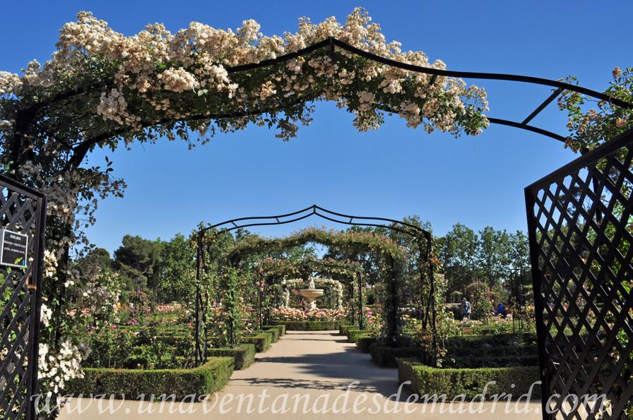 El retiro jardines de la rosaleda for Imagenes de jardines con estanques
