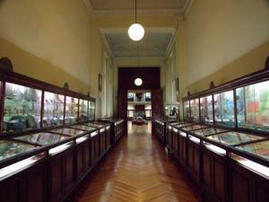 Museo Geominero, Pasillo entrada al museo