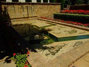 Alcázar de los Reyes Cristianos, Plátano de Julio César