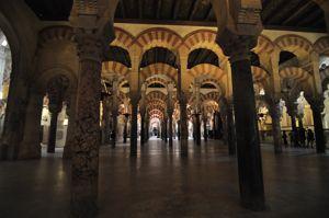 Mezquita de Córdoba, Bosque de columnas