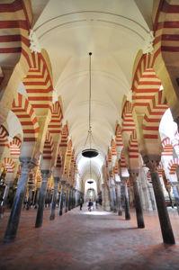 Catedral-Mezquita de Córdoba, Nave número cinco de la ampliación de Almanzor y número dieciséis del edificio