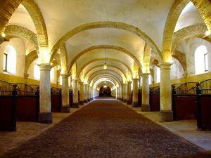 Córdoba, Cuadras de las Caballerizas Reales