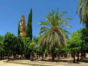 Córdoba, Patio de los Naranjos