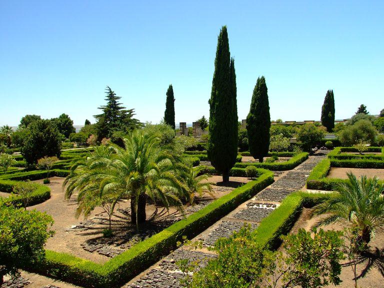 C rdoba medina azahara conjunto arqueol gico madinat al for Arboles altos para jardin
