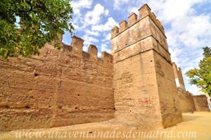 Murallas de Sevilla, Muralla de los Jardines del Valle