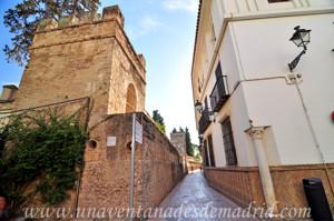 Murallas de Sevilla, Muralla del Callejón del Agua