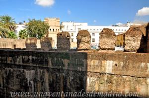 Murallas de Sevilla, Muralla de la Torre de la Plata