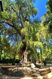 Sevilla, Parque de María Luisa, Glorieta de Bécquer (21)