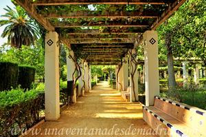 Sevilla, Parque de María Luisa, Pérgolas con bancos del Jardín de los Leones