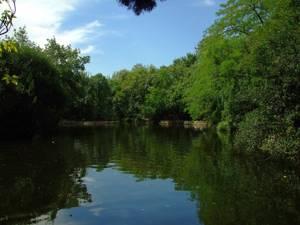 Parque de El Capricho, Lago