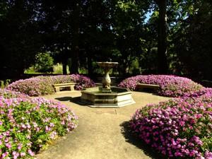 Parque de El Capricho, Fuente