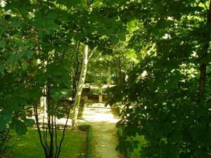Parque de El Capricho, Jardín Bajo o de las Ranas
