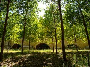 Talamanca de Jarama, Puente romano, arcos menores