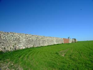 Torrejón de Velasco, Tapia del antiguo Convento de los Monjes Trinatarios Descalzos