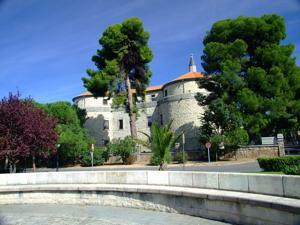 Villaviciosa de Odón,Castillo de Villaviciosa de Odón